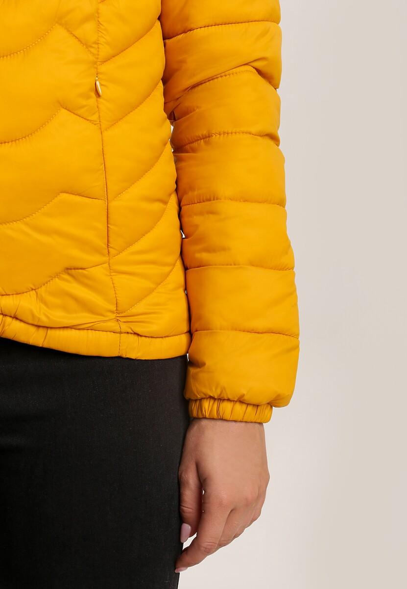 Żółta Kurtka Zelilopei