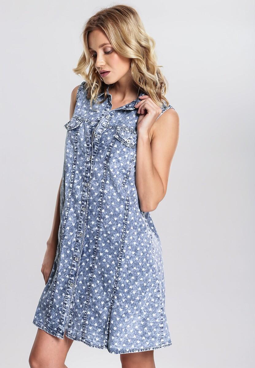 Niebieska Sukienka Boisterousness
