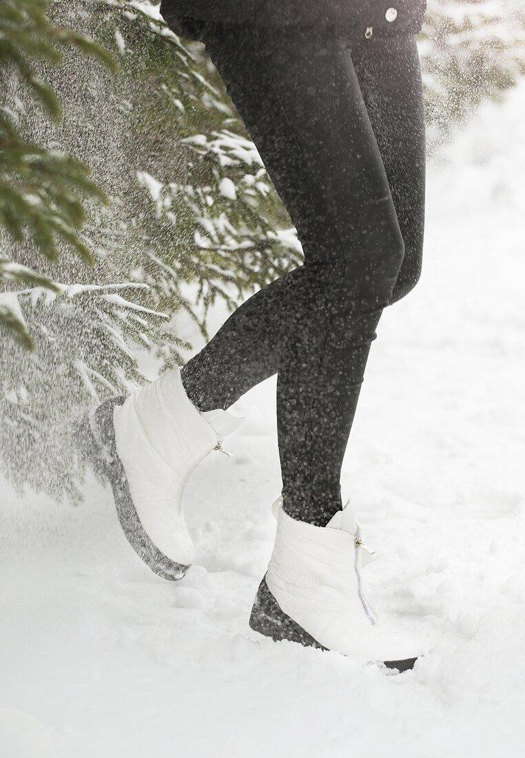 Białe Śniegowce In Winter